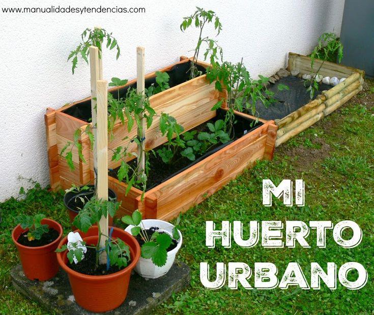 Mejores 1629 im genes de plantas en pinterest - Mini huerto urbano ...