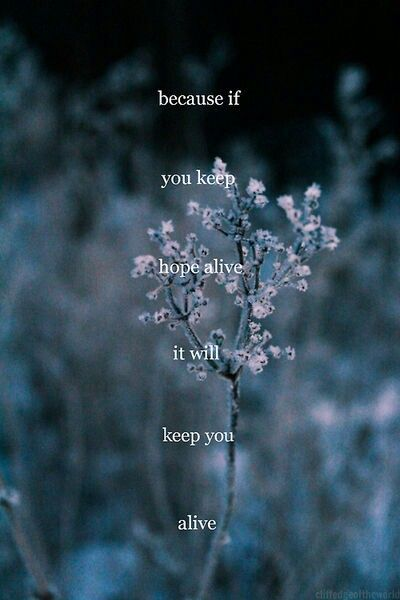 keep hope alive words of wisdom pinterest quotes words and sayings
