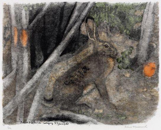 Lièvre au couchant 1983, Cartigny Robert HAINARD Gravures 28.2 x 36 cm Gravures GRAVURE sur bois n° 774 Observation 23.6.1983 Cartigny (Canton de Genève) hare