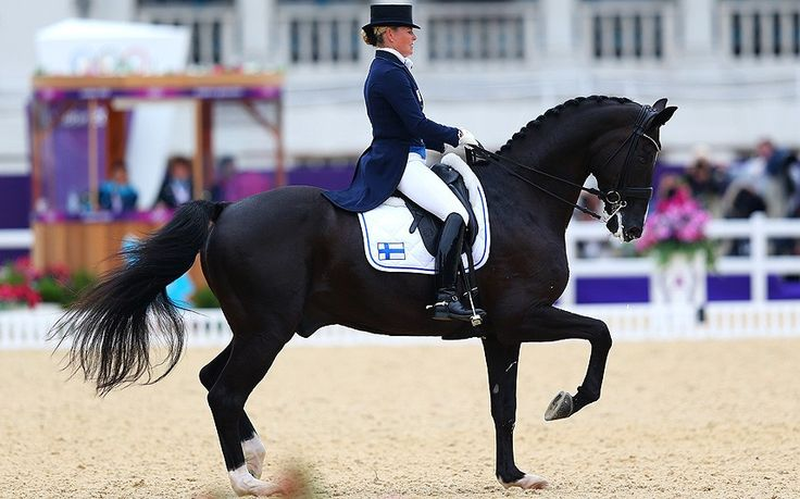 dressage   ... Dressage Grand Prix Special on Day 11 of the London 2012 Olympic Games