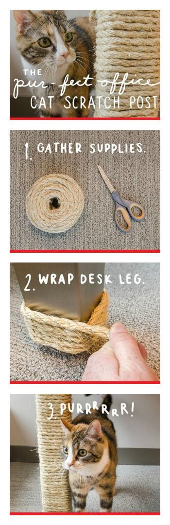 DIY Homemade Cat Scratching Post - how COOL is this!!? Add this to your cats must-have list! #cats #DIY