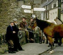 Pferdehändler