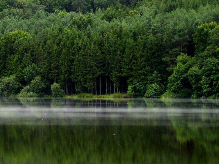 Hársas-tó, Őrség