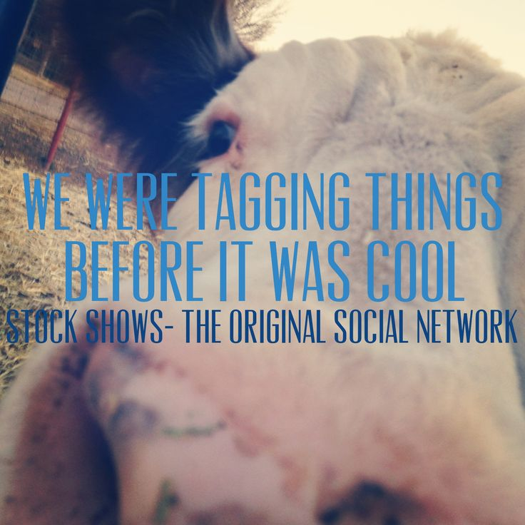 We were tagging things before it was cool