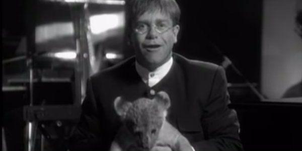 Circle Of Life Elton John Traducao E Letra Elton John Circle Of Life Celebrity Stars