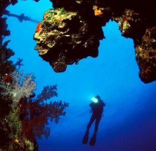 Top 10 International Diving Wrecks #diving #divesites #divingwrecks