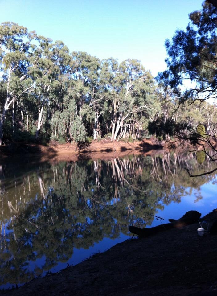 Beautiful reflection in the Murray River at Barham. N.S.W.
