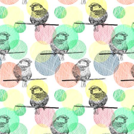 Ptaki na tle kół
