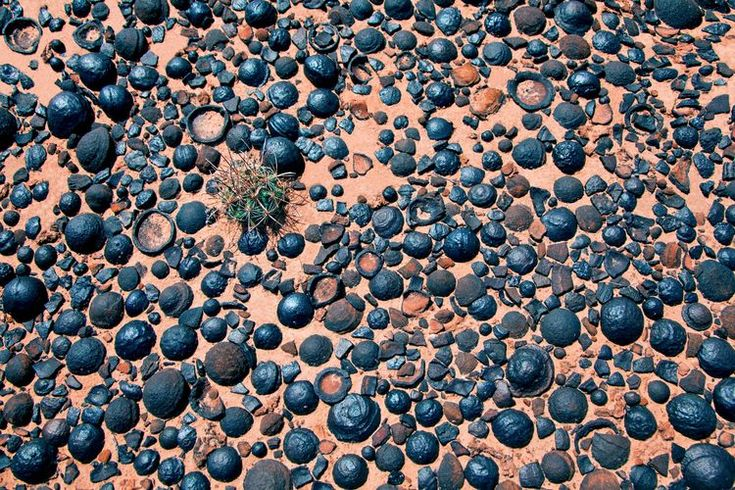 Photographer: Bret Webster. The photo above shows Moqui Marbles in their native habitat of southern Utah. These curious rocks are actually concretions having iron (hematite) rinds. Pictured with the marbles is a Devils-Claw cactus (Sclerocactus parviflorus).