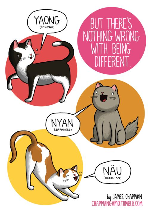 Worldwide Woofs and Other Animal Sounds Illustrated in Different Languages