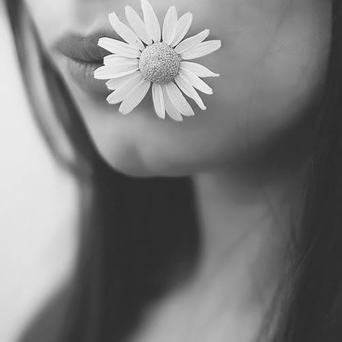 beauty-flower-lips-romance