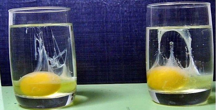 Cómo Saber Si Tenemos Energías Negativas Bienestar Salud Stemless Wine Glass Health And Beauty Tips Alcoholic Drinks