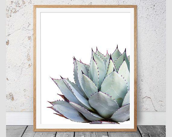 Cactus Print sappige Print cactussen Print door CoastalStylePrints