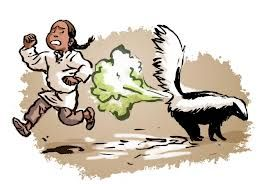 Fun Skunk Facts for KidsEasy Science For Kids