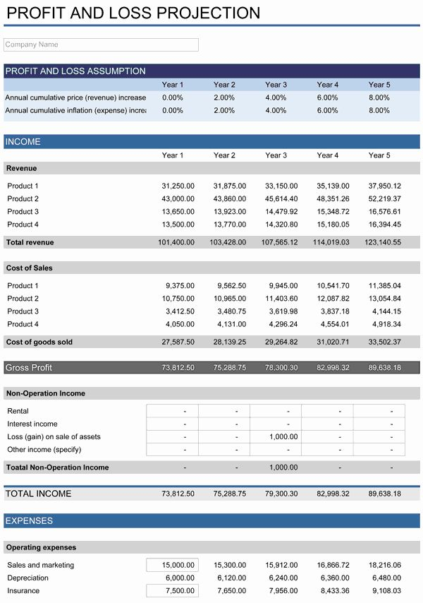 5 Year Budget Plan Template Fresh 5 Year Financial Plan In 2021 Financial Plan Template Financial Planning Business Plan Example