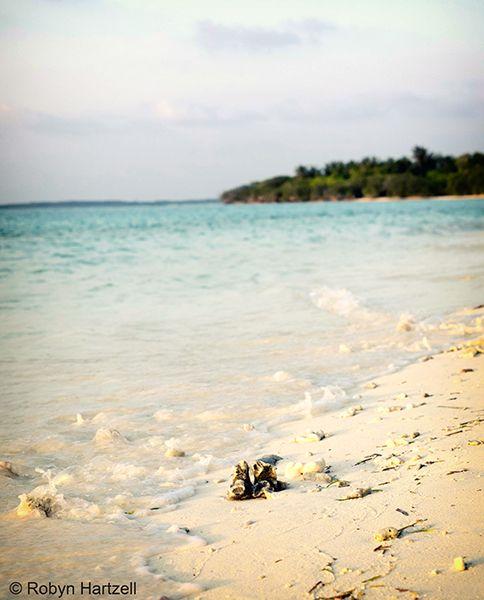 Hanimaadho Island - Maldives
