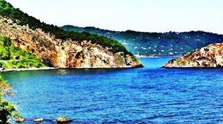 Karadeniz'in ferahlığını ve yeşilini seviyorsanız, Ordu ilanlarımıza göz atın: http://emjt.co/02h9R #nature #blacksea #Ordu #Turkey #green