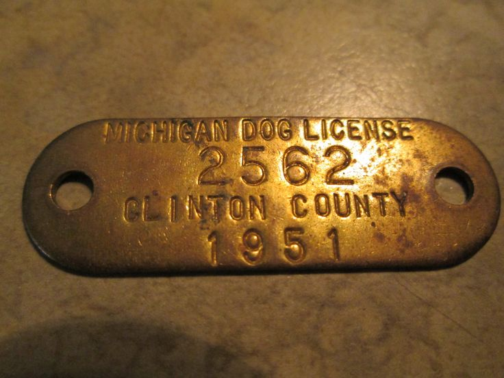 Dog License 1951 Clinton County Michigan / Dog Tag / Pet Collectible / Dog Tax/ Canine / Vintage by AuctionAddict38 on Etsy