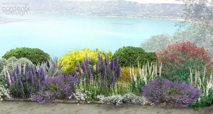 Oltre 25 fantastiche idee su arbusti sempreverdi su - Progetto giardino mediterraneo ...