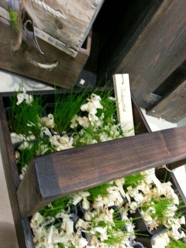 Boxes for garden
