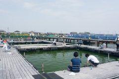 三重県松阪市にある松名瀬フィッシングパーク  ヒラメ養殖会社株式会社 丸年水産が運営する陸上釣り堀です 施設内の釣り堀にはヒラメハマチタイメバルガシラセイゴなど多彩なお魚を放流しています 初心者女性お子さんにはスタッフのサポートがありますので安心してチャレンジできます 釣り具一式の貸し出しもありますので手ぶらで訪れても大丈夫 お得なファミリーパックでは大人1人に子ども料金1名が無料の上お土産のヒラメが付きます 松名瀬フィッシングパークは親子で初めての釣りにピッタリの釣り堀ですよ tags[三重県]