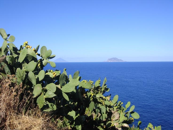 Salina, Eolie Islands, Sicily.