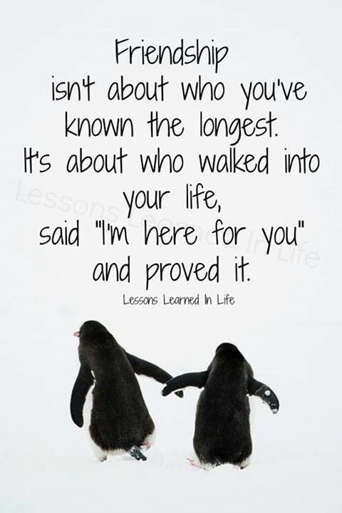 15 Best Friendship Sayings Words To Remember Quotes Friendship