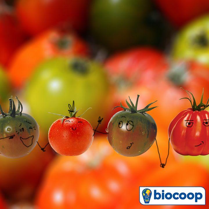 En août, place à la tomate chez Biocoop !