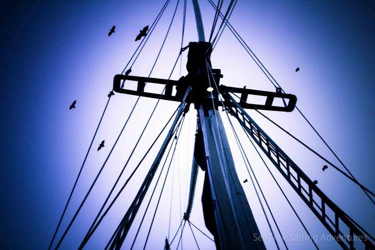 Sumbawa   SeaTrek Sailing Adventures - sumbawa-6