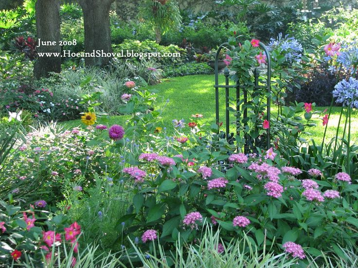 great tips on planning the florida native garden and so many beautiful photos of inspiration
