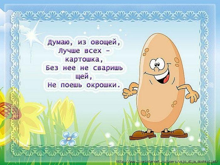 Смешные стихи для детей в картинках, днем