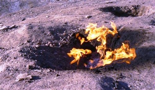 Considerate a fi unele dintre cele mai insemnate fenomene ale naturii, Focurile  ...  Considered to be one of the most significant natural phenomena, fires Lopatari c ... MORE DETAILS HERE