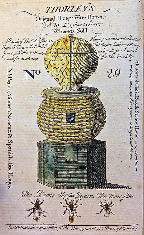 Thorley's Original Honey Warehouse, 1774. Hand-colored frontispiece advertisement for an 18th century London bee culture supplier via Tumblr