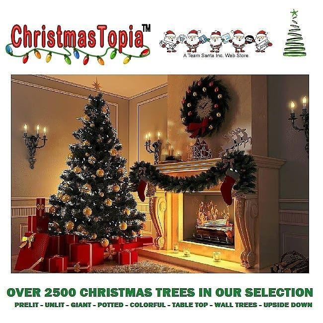 Lighted Christmas Trees Lights Decorations And Ornaments At The