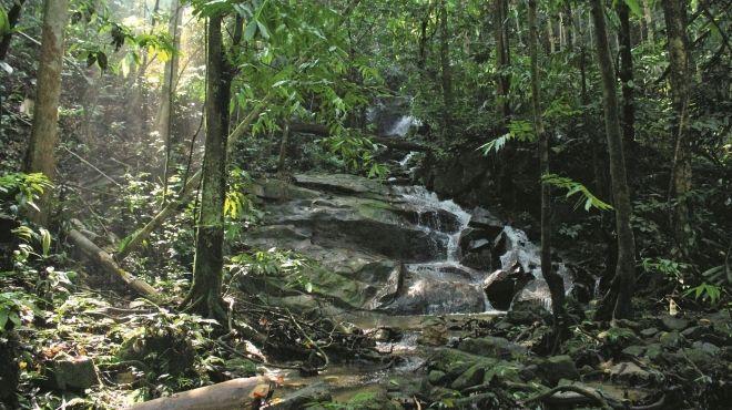 Best-kept secret hiking trails around the Klang Valley