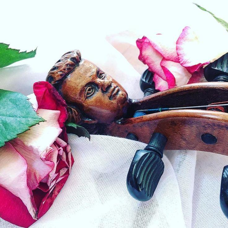 Na górze róże Na dole Pan Głowa Kto nie da serduszka Ten niech się schowa  _______________________ #violin | #violino | #violinist | #violinlife | #violingirl | #skrzypaczka | #skrzypce | #muzyka | #geige | #fiddle | #musicaclassica | #instrument | #instaclassical | #bestmusicshots |  #soloist | #virtuoso | #stringmusician | #violinsolo | #jj_musicmember | #classicfm | #talentedmusicians | #instamusiciansdaily | #skrzypczyni | #flowerpower | #still_life_gallery | #shotwithlove | #róże…