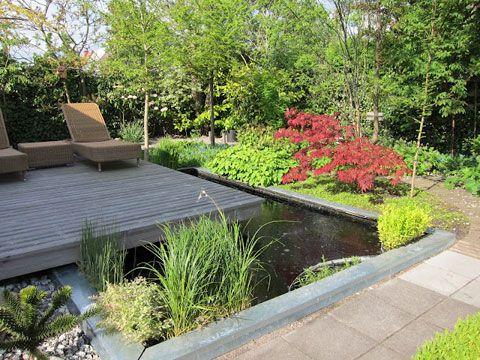 Trädgård trädgård damm : Över 1000 idéer om TrädgÃ¥rdsdamm pÃ¥ Pinterest | Dammar