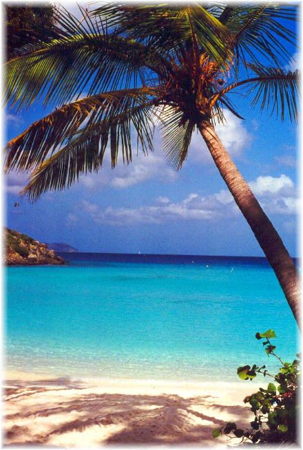 Trunk Bay, St. John Island, USVI - Want to go back...so beautiful.