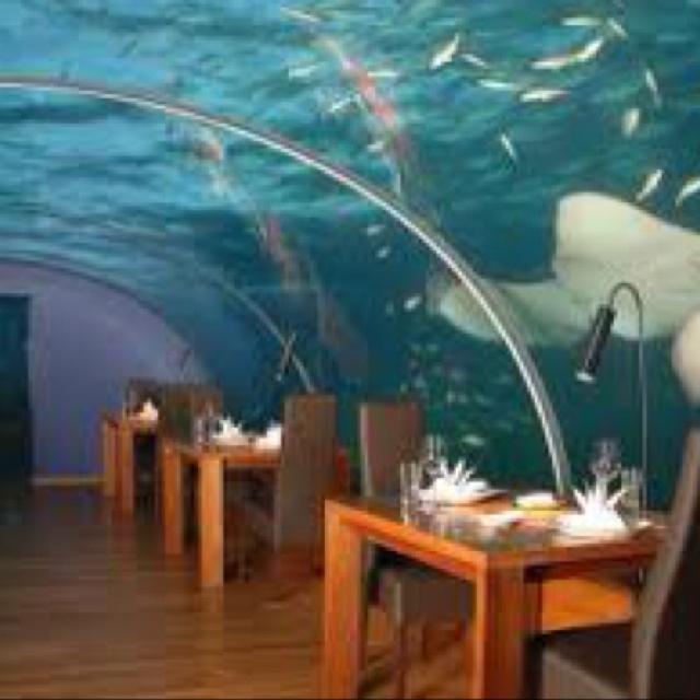 Dubai under water hotel!