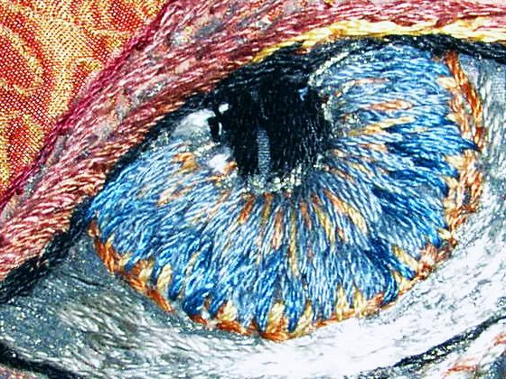 Costume Embroidery & Illustration by Michele Carragher for Film & TV - Elizabeth 1 Gallery -incredible eye!
