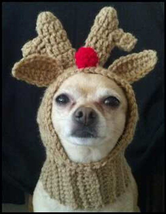 PDF Crochet Pattern for Doggie Reindeer Hat for Small Breed Dogs ... 0303cf2957c