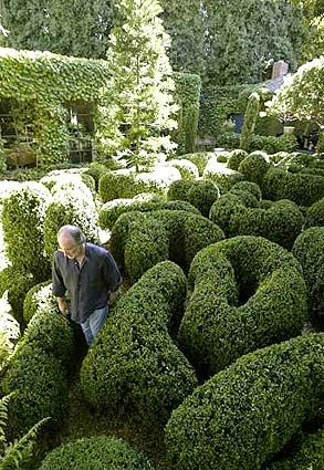 Richard Shapiro's boxwood maze