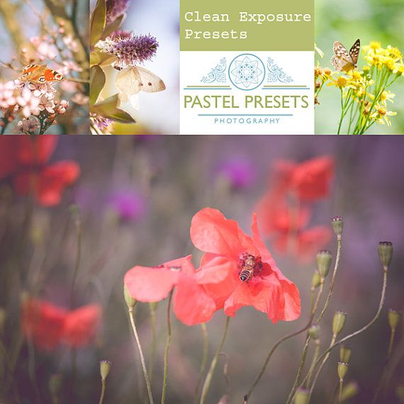 5 Clean Exposure Presets Lightroom van PastelPresets op Etsy
