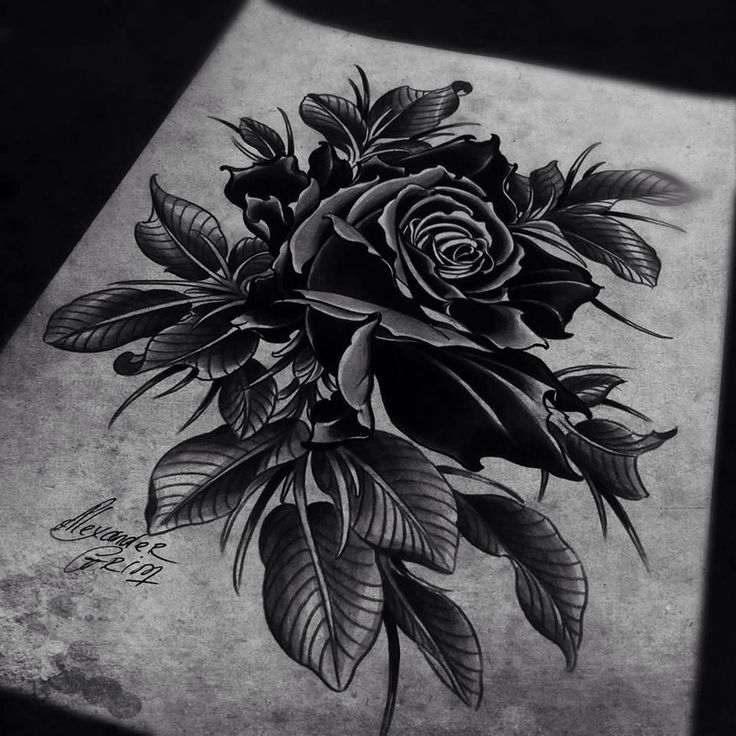 rose tattoo flash drawing by alexander grim