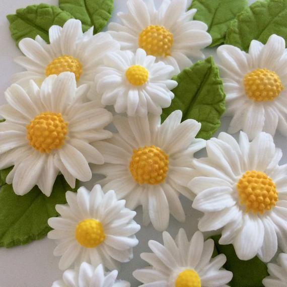 Edible Daisy Clay