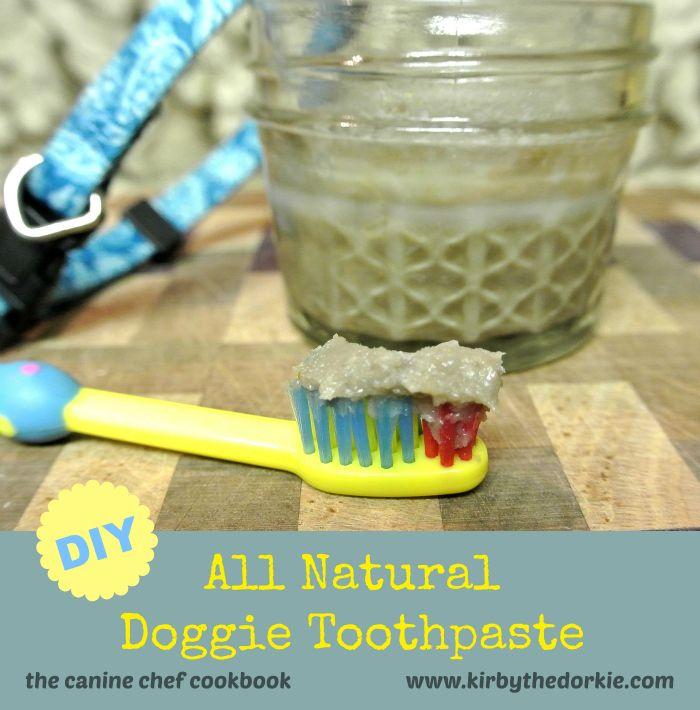 DIY Doggie Toothpaste                                                                                                                                                                                 More