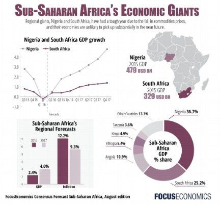economic growth in south africa essay Essay that question is: is, africa in danger of totalitarian rule we have not dealt  with whether or not african regimes  cases, south africa and the congo, some  students of african  by glaucio soares, economic development and political.