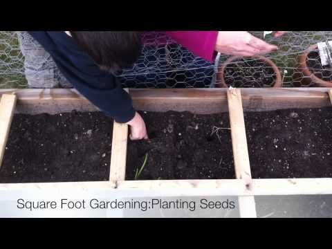 Square Foot Gardening: How To Plant Seeds {Video Tutorial}
