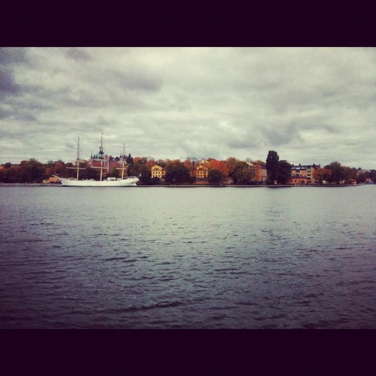 Lake, Autumn leaves