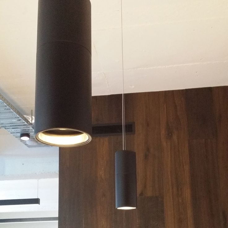 Hung Deep LED IT is a suspended luminaire with integrated transformer and has a recessed lamp for low glare applications. The suspended body allows for optional 2-tone finish and the height adjustable suspension canbe supplied 2m or 6m lengths   http://www.darkon.com.au/product/hung-deep-led-it/